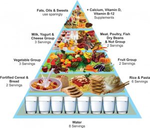 iku-food-pyramid-1706780589