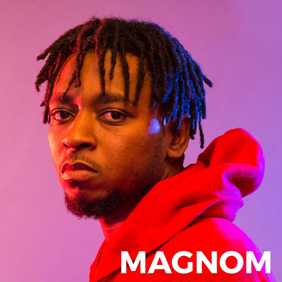 Magnom emergers 2017