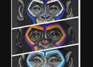 Serie A has used three paintings of monkeys to illustrate a campaign to stamp out racism. Paintings by Simone Fugazzotto (sky sports)