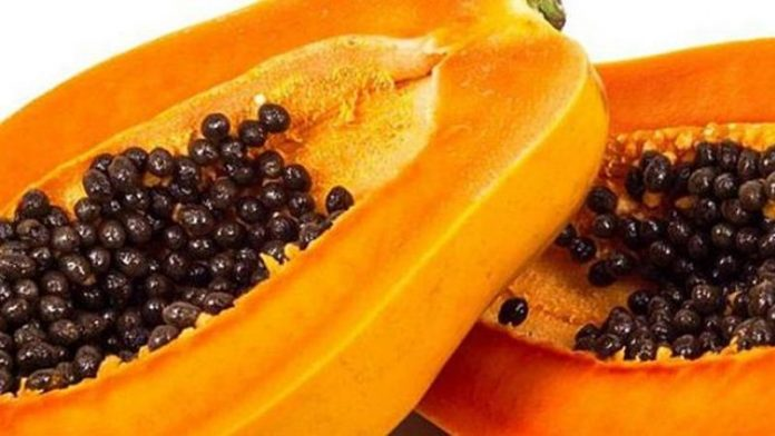 The Health Benefits Of Papaya Seeds Are Unbelievable - Kuulpeeps - Ghana  Campus News and Lifestyle Site by Students